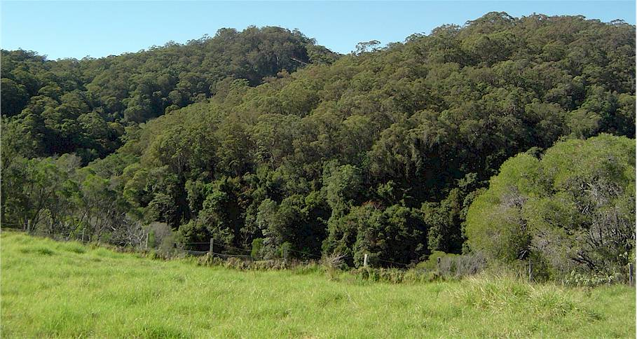 Image of Mount Cotton