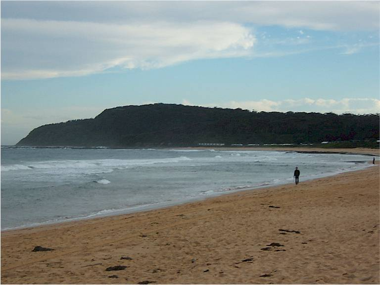 Image of Shelly Beach