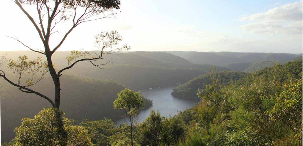 Image of Berowra Heights
