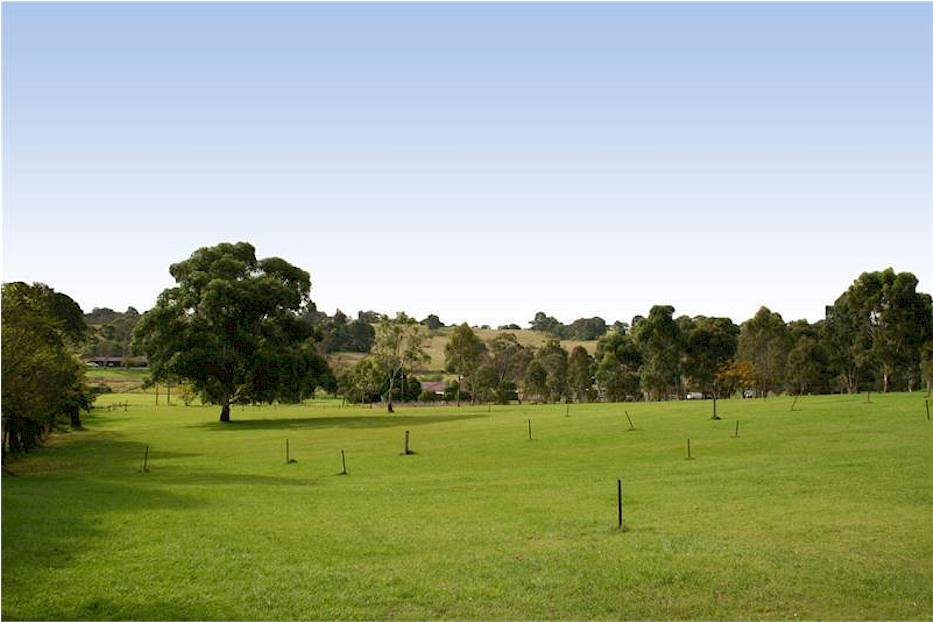 Image of Box Hill