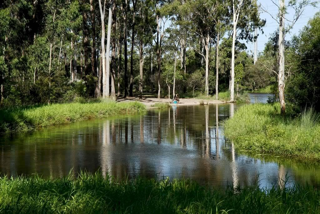 Image of Cedar Vale