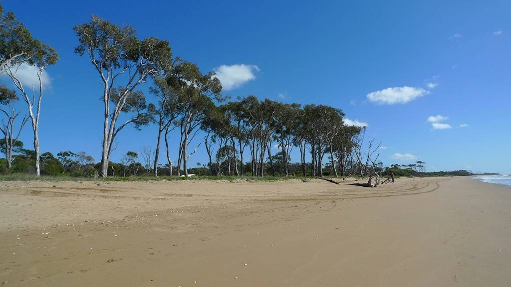 Image of Moore Park Beach